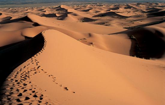 ali_desert_0.1