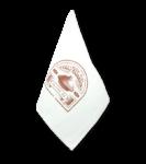 ali-baba-tajine-original-geschirrtuch-1